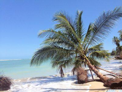 costa-rica-puerto-viejo